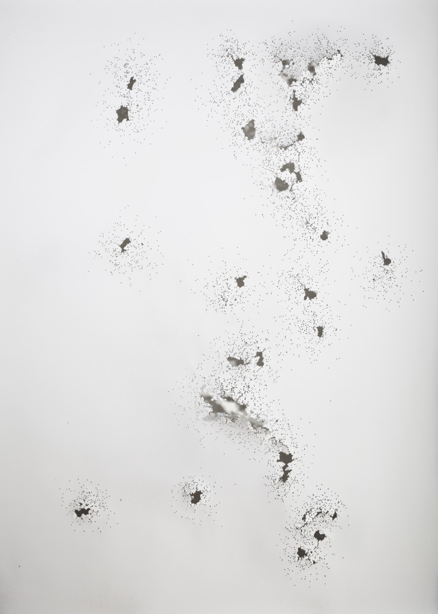 Dominique Edwards. Weg I. 2011. 12 Gauge shotgun on paper.